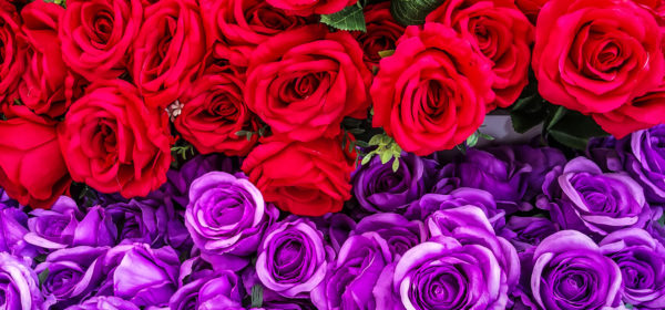 Red and Purple Wedding Ideas to Consider